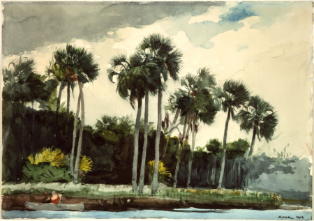 Red_Shirt,_Homosassa,_Florida_by_Winslow_Homer,_1904